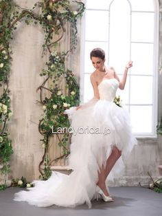 ウェディングドレス 二次会ドレス ビスチェ ミニ/ショート アイボリー コートトレーン B12067 価格 ¥30,700