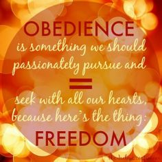 Learning to Walk in Wild Obedience...  over @The Declare Conference