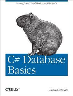 C# database basics / Michael Schmalz