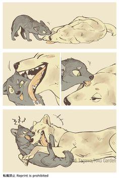 """田川ミ@こり②11/14発売決定!さんのツイート: """"おっきいのとちっちゃいのがじゃれてるだけ #こりせんまん… """" Cute Wolf Drawings, Funny Drawings, Anime Furry, Anime Wolf, Funny Animal Jokes, Cute Funny Animals, Wolf Comics, Memes Lindos, Furry Comic"""