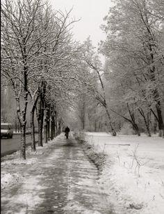 road to nyvki- kyiv, ukraine