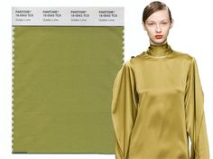 Fall/ Winter 2017-2018 Pantone Colors: Golden Lime