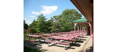 Picnic tables in Waterloo Park-- a great place to rent for a function Places To Rent, Great Places, Picnic Tables, Outdoor Furniture Sets, Outdoor Decor, Sun Lounger, Backyard, Park, Home Decor