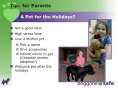 Holiday Child & Pet Safety Tips - 33 minute webinar with tips for parents and dog owners about dog body language and dog manangement at holiday gatherings - excellent!