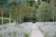 The Nieuwe Ooster cemetery, garden of remembrance (by Karres+Brands). Location: Watergraafsmeer, Amsterdam