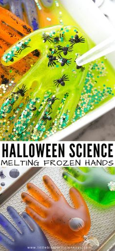 Turn an ice melting activity into a creepy fun Halloween melting ice experiment this month! Create your own spooky frozen hands and explore how ice melts. Halloween Science, Halloween Week, Halloween Activities For Kids, Autumn Activities, Halloween Themes, Halloween Theme Preschool, Spooky Halloween, Toddler Crafts, Toddler Activities