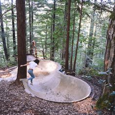 Thesis - DIY bowl in the redwoods Skateboard Ramps, Skateboard Art, Jump Park, Backyard Skatepark, Foster Huntington, Mini Ramp, Skate Ramp, Bike Parking, Outdoor Projects