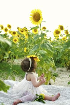 A south Louisiana children's portrait session in a sunflower field!