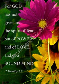 2 Timothy 1:7. Amen to this. No spirit of fear here... Thank u God, Jesus and all else concerned. YES!!!