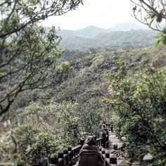 【nicole50819】さんのInstagramをピンしています。 《#鼻頭角 #森 #キレイ #beautiful #taiwan》