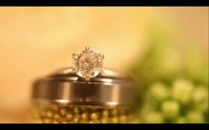 Bonnie & Tri - wedding highlight Toate drepturile rezervate©ImagoFilm Wedding Highlights, Video Editing, Engagement Rings, Amp, Jewelry, Enagement Rings, Wedding Rings, Jewlery, Jewerly