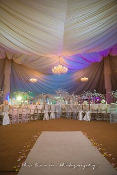 Blue velvet luxury marquee  Pre-wedding dinner