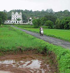 Goa in Monsoon - Any one?