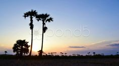 Beautiful time lapse sunset in countryside - Stock Footage | by Punya Family (โอเล่..เน้อ)