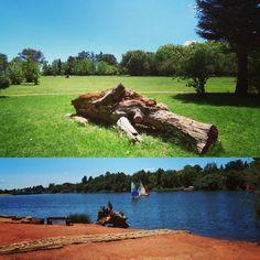 Sunday in #Johannesburg #BotanicGarden