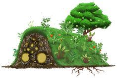 Cultivo sobre camas elevadas hechas con madera en descomposición.