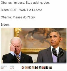 Joe And Obama, Obama And Biden, Joe Biden, Lgbt Memes, Funny Memes, That's What She Said, Teen Posts, Stupid Funny, Reaction Pictures