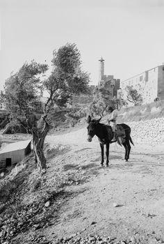 Jerusalem c. 1900 IMAGE: AMERICAN COLONY (JERUSALEM). PHOTO DEPT/LIBRARY OF CONGRESS