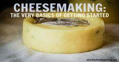 Cheesemaking: The Very Basics of Getting Started | The Elliott Homestead