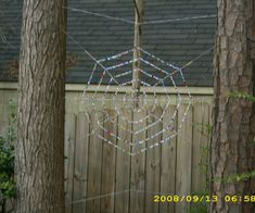 Create your own spider web using fishing line and beads.