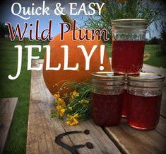 Wild Plum Jelly recipe - No peeling, no pitting, no PECTIN Check out this Lazy-Girl's wild plum jelly recipe.