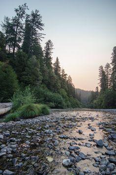 (1) Redwood National Park Trip 2015 - Imgur