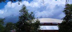 R. Mac Wheeler: Sunday Safari    Sun Dome, Tampa