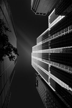 Photograph Chicago Tower by Miguel Jelliss on Chicago Tower, White Photography, Skyscraper, Multi Story Building, Black And White, Black White Photography, Monochrome, Skyscrapers, Black N White