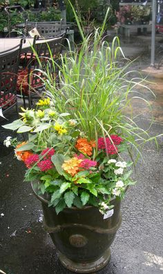 pot with different flowers/plants by the front door