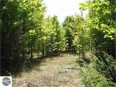 Frankfort, Benzie County, Michigan Land For Sale - 5 Acres