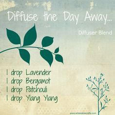 DIFFUSER BLEND IDEA: Sometimes I just need some help to get my mind to shut off at night... this is the blend for those times: Lavender: Calming and relaxing qualities Bergamot: Calming and soothing aroma Patchouli: Grounding, balancing effect on emotions Ylang Ylang: Lifts mood while having a calming effect www.whitetablecrafts.com