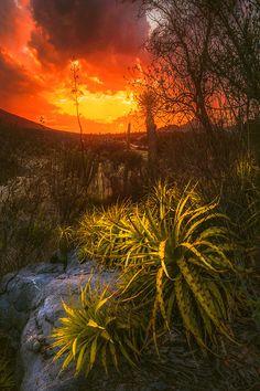 Lechuguillas Sunset by Luis Lyons