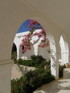 Guellala - Djerba / Tunisia   Flickr - Photo Sharing!