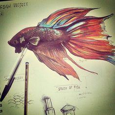 schizzi#pescecombattente#fish#skatchbook#conceptplamning#design