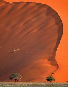 Namib Desert: Namibia