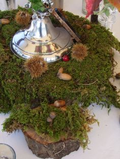 Tree Trunk section with moss as base for candelabra.