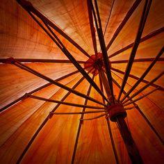 Orange umbrella by Images by Bay, via Flickr