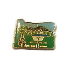 Sweet Home Oregon Elks Enamel Pinback BPOE 1972 Lapel Pin Green Peter Tie Tack Hat Pin by ThriftyTheresa