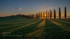 [..Tuscany Sunrise] by TSiegenthaler #Landscapes #Landscapephotography #Nature #Travel #photography #pictureoftheday #photooftheday #photooftheweek #trending #trendingnow #picoftheday #picoftheweek