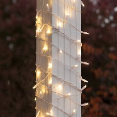 Easy to use LED Column Wrap Lights with Warm White bulbs on a x net on a White wire. LED net lights and trunk wraps give outdoor Christmas lights a professoinal look. Icicle Lights, White Led Lights, Led String Lights, Solar Lights, White Lamps, Light Led, White Wire Christmas Lights, Holiday Lights, White Christmas