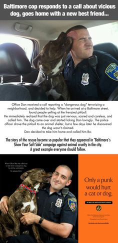 Hero Baltimore cop saves dog, gains new best friend… Good Guy! Faith in Humanity Restored , Happy News, Pitbull Terrier, I Love Dogs, Puppy Love, Pitbulls, Funny Animals, Cute Animals, Funny Dogs, Faith In Humanity Restored, In This World