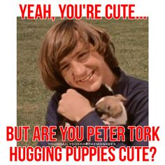 The Monkees Memes David Jones Mike Nesmith Peter Tork Micky Dolenz 1960's Monkees Gonna Buy Me a Dog Fun Cute Monkees Puppies InductTheMonkees