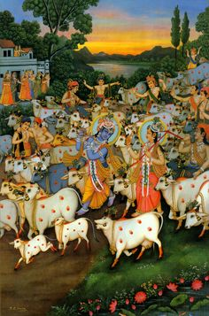 Krishna the Cow Herd. Avatar of Vishnu. Hare Krishna, Señor Krishna, Krishna Lila, Radha Krishna Photo, Pichwai Paintings, Indian Art Paintings, Lord Krishna Images, Radha Krishna Pictures, Shiva Art