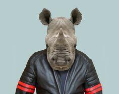 Black-Rhinoceros---Diceros-Bicornis