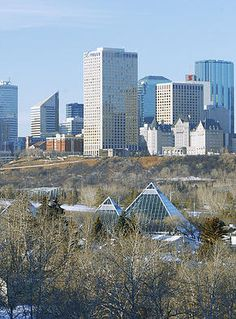 Election Edmonton