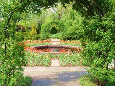 Cleveland Botanical Gardens - Romantic garden shot thru arbor Cleveland Botanical Garden, Botanical Gardens, Unique Gardens, Beautiful Gardens, Plant Pictures, Garden Photos, Motivational, Sidewalk, Romantic