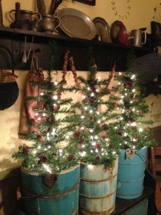 """Trees in primitive buckets"" ... Those are old ice cream makers, and I have one! Guess where my kitchen tree is going?!"