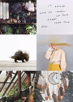 Pukwudgie Aesthetics ~I'd rather make an impact on your heart than your eyes~