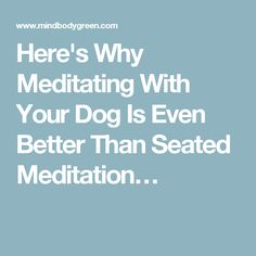 Here's Why Meditating With Your Dog Is Even Better Than Seated Meditation…