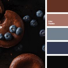 Color palette { blueberry & chocolate } #2801